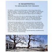Μακρινίτσα - οπισθόφυλλο